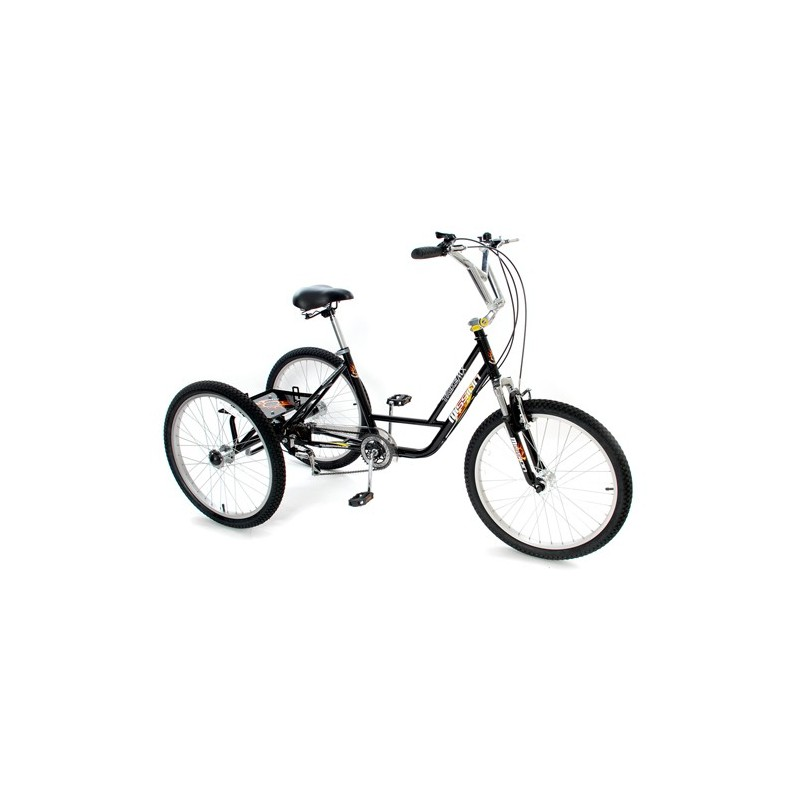 """24"""" BMX Trike"""